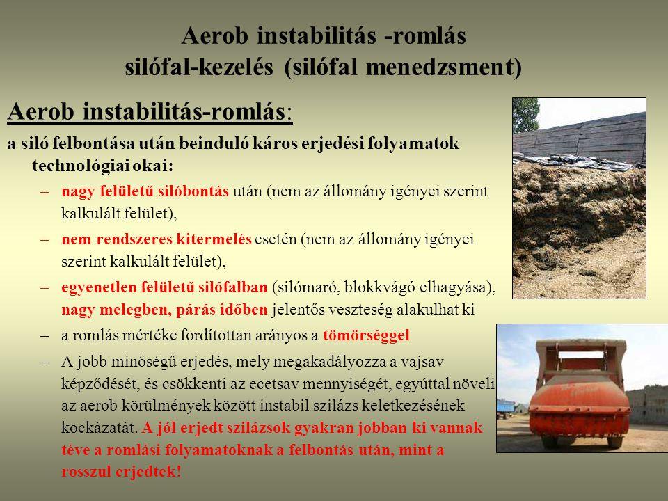 Aerob instabilitás -romlás silófal-kezelés (silófal menedzsment) Aerob instabilitás-romlás: a siló felbontása után beinduló káros erjedési folyamatok