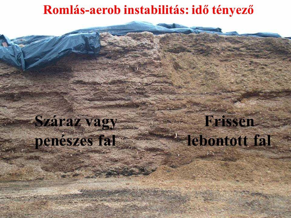 Száraz vagy penészes fal Frissen lebontott fal Romlás-aerob instabilitás: idő tényező