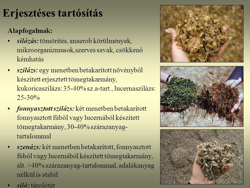 Az erjedést befolyásoló tényezők Nagyobb veszteséggel járó megoldások silótakarásra (a veszteség mértéke mindig a felső réteg tömörségének függvénye!) –Takarmánymész: etethető, kevés a tapasztalat (3-4 kg/m 2 ?) –Talajfelhordás - szennyezi a szilázst, liszteriózis, Clostridia-vajsavas erjedés ELLENJAVALT.