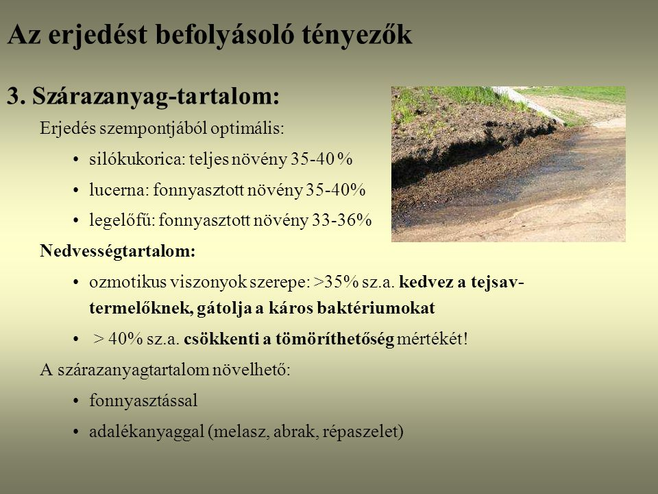 Az erjedést befolyásoló tényezők 3. Szárazanyag-tartalom: Erjedés szempontjából optimális: silókukorica: teljes növény 35-40 % lucerna: fonnyasztott n