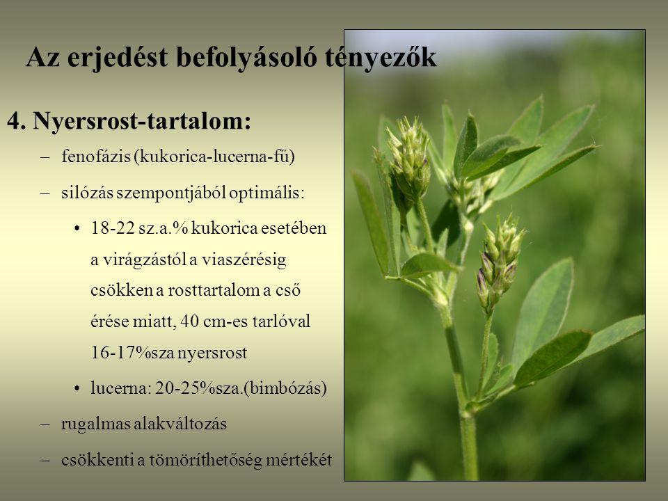 Az erjedést befolyásoló tényezők 4. Nyersrost-tartalom: –fenofázis (kukorica-lucerna-fű) –silózás szempontjából optimális: 18-22 sz.a.% kukorica eseté