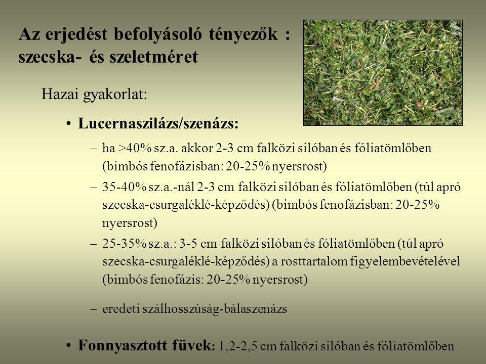 Az erjedést befolyásoló tényezők : szecska- és szeletméret Hazai gyakorlat: Lucernaszilázs/szenázs: –ha >40% sz.a. akkor 2-3 cm falközi silóban és fól