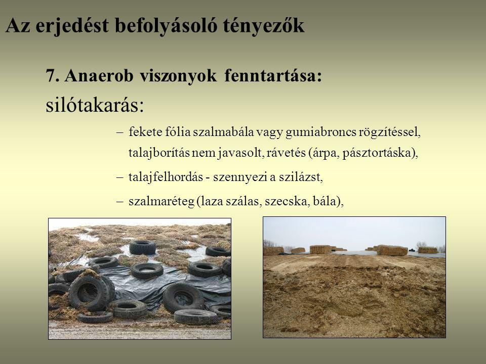 Az erjedést befolyásoló tényezők 7. Anaerob viszonyok fenntartása: silótakarás: –fekete fólia szalmabála vagy gumiabroncs rögzítéssel, talajborítás ne