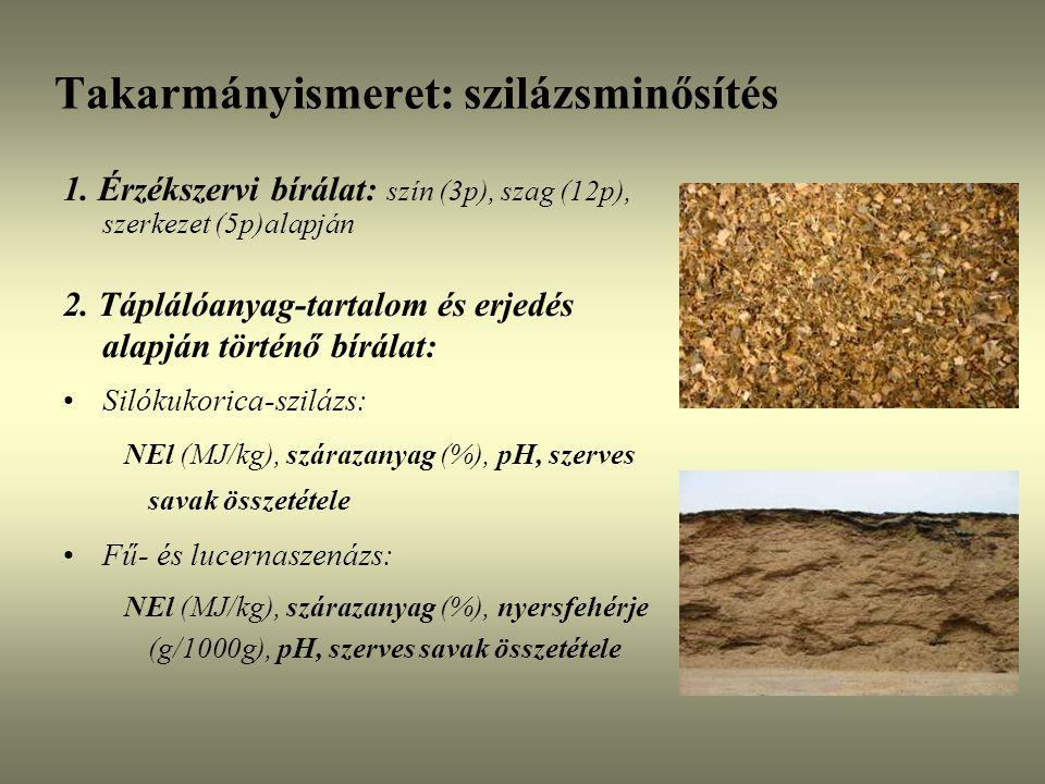 1. Érzékszervi bírálat: szín (3p), szag (12p), szerkezet (5p)alapján 2. Táplálóanyag-tartalom és erjedés alapján történő bírálat: Silókukorica-szilázs