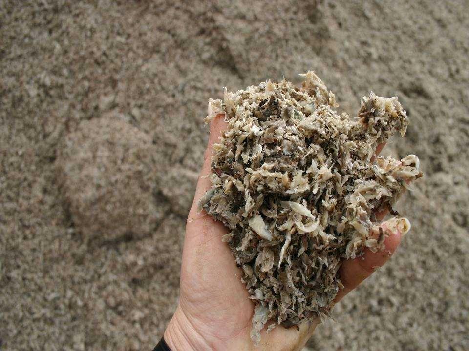 A szerves savak összetétele az erjesztett takarmányokban a szárazanyag függvényében