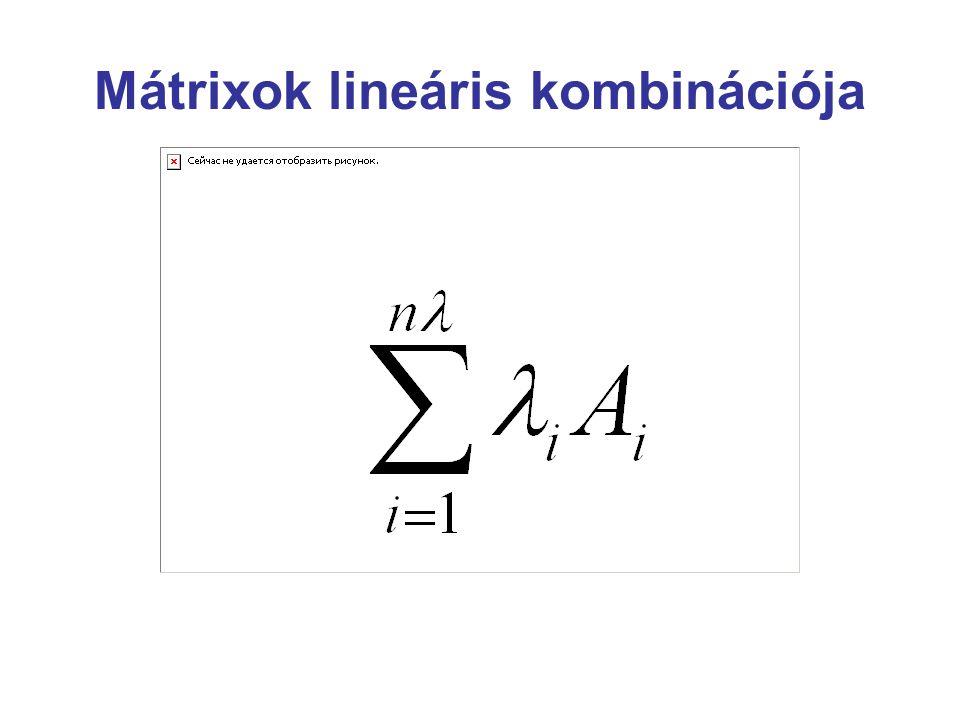 Mátrix rangja A mátrix legnagyobb rendű nem zérus determinánsú minormátrixának rendjét a mátrix rangjának nevezzűk.
