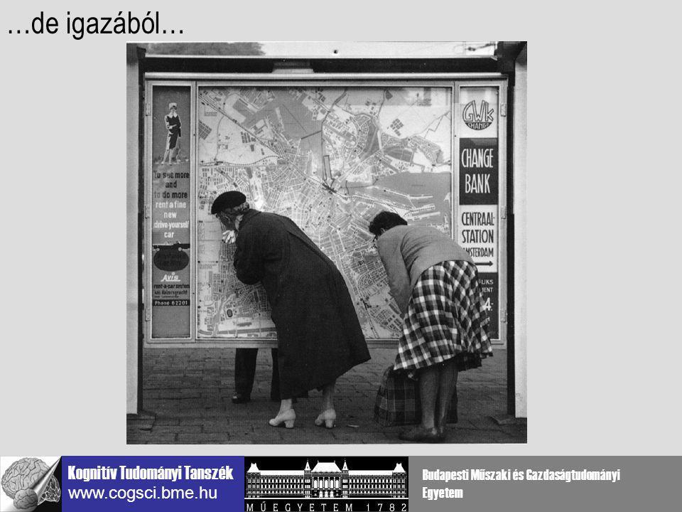 Kognitív Tudományi Tanszék www.cogsci.bme.hu Budapesti Műszaki és Gazdaságtudományi Egyetem téri frekvencia végződés távolság V1 interakciók vizsgálatára szűk sávban van nincs középpontok között alkalmas széles sávban van van: illuzórikus kontúr nem definiált alkalmatlan