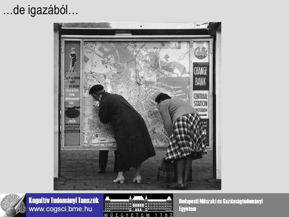 Kognitív Tudományi Tanszék www.cogsci.bme.hu Budapesti Műszaki és Gazdaságtudományi Egyetem Elsődleges látókéreg (V1) a látási ingerek fő adatelemzője az agyban LOKÁLIS input elemzés: luminencia diszparitás mozgás szin orientáció …jobb lesz tehát az elején kezdeni…