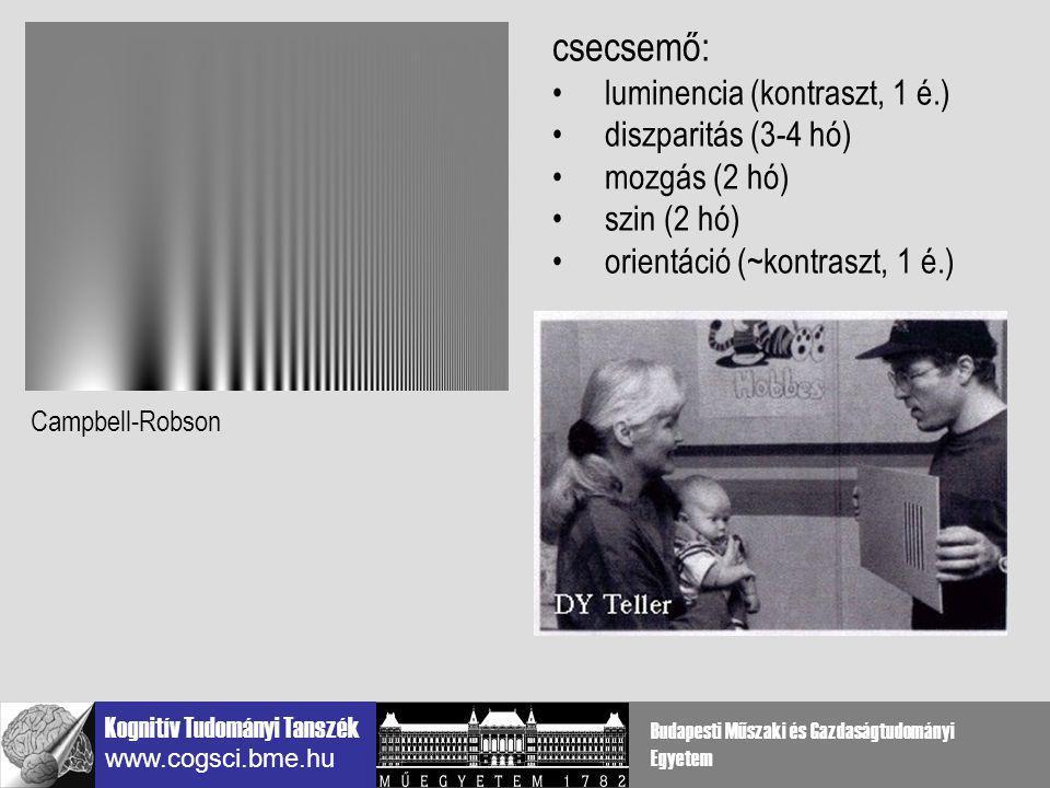 Kognitív Tudományi Tanszék www.cogsci.bme.hu Budapesti Műszaki és Gazdaságtudományi Egyetem elsődleges látókéreg (V1) szerepe Agnóziás beteg Giersch, Humphreys, Kovacs & Boucart Cog Neuropsych, 17: (8) 2000 lassú fejlődés 5-14 évesek Kovács, Kozma, Benedek, PNAS 1999 normális vizuális input szükséges Ambliópia Kovács et al, Vision Res, 40(13) 2000 Chandna et al, Inv Opth.