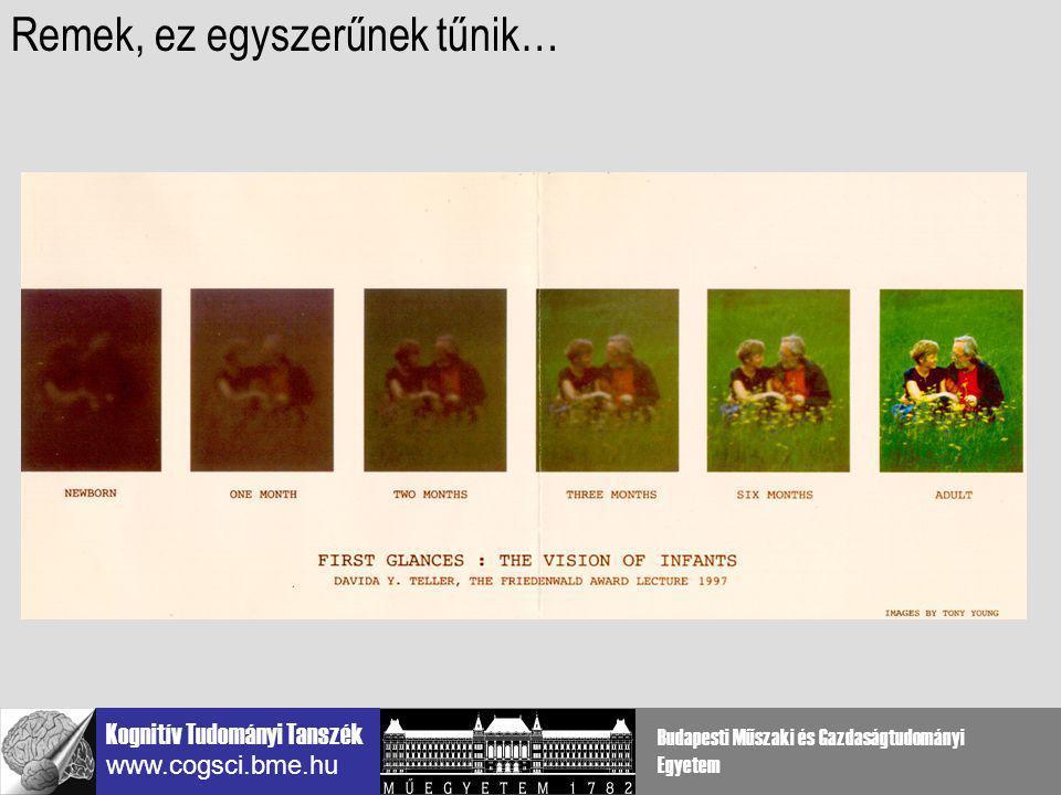 Kognitív Tudományi Tanszék www.cogsci.bme.hu Budapesti Műszaki és Gazdaságtudományi Egyetem Kontúr-integrációs pardigma: kontúr + zaj Kovács és mtsi, 1993-
