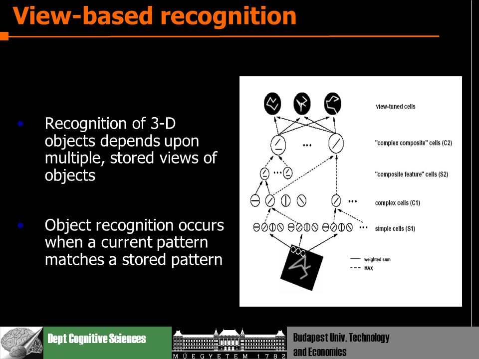 Dept Cognitive Sciences Budapest Univ. Technology and Economics View-based recognition Recognition of 3-D objects depends upon multiple, stored views