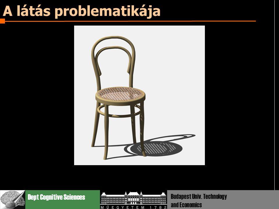 Dept Cognitive Sciences Budapest Univ. Technology and Economics A látás problematikája