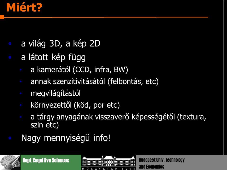 Dept Cognitive Sciences Budapest Univ. Technology and Economics Miért? a világ 3D, a kép 2D a látott kép függ a kamerától (CCD, infra, BW) annak szenz
