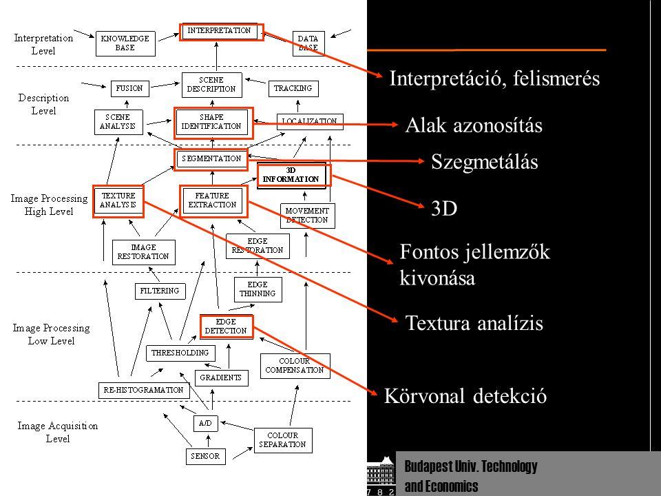 Dept Cognitive Sciences Budapest Univ. Technology and Economics Körvonal detekció Fontos jellemzők kivonása Textura analízis Szegmetálás Alak azonosít