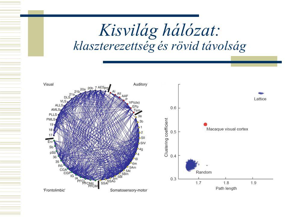 Kisvilág hálózat: klaszterezettség és rövid távolság