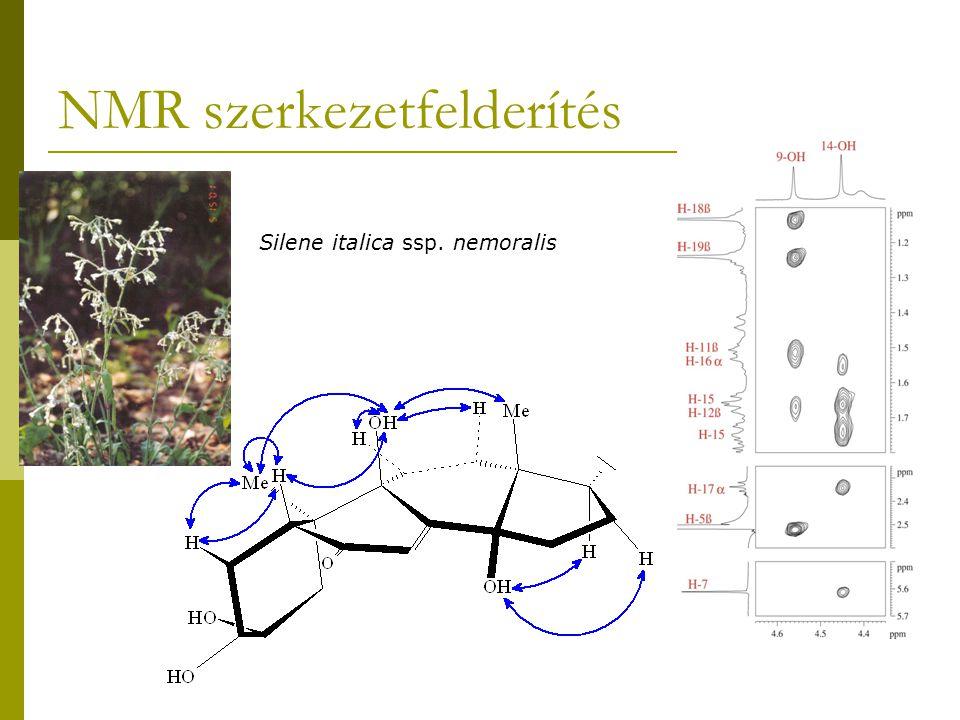 NMR szerkezetfelderítés Silene italica ssp. nemoralis