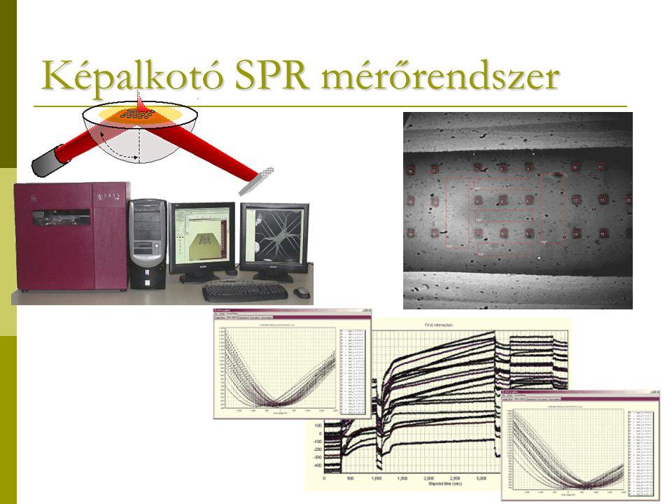 Képalkotó SPR mérőrendszer