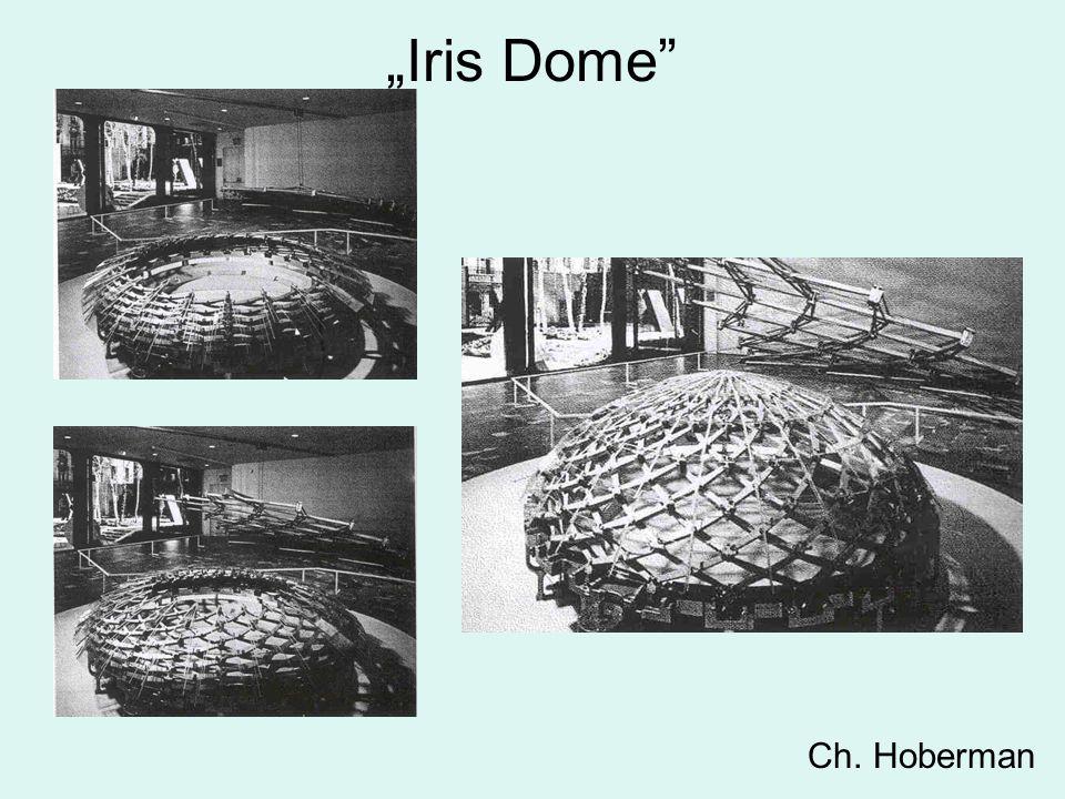 """""""Iris Dome"""" Ch. Hoberman"""