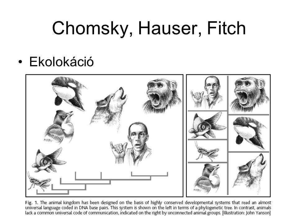Chomsky, Hauser, Fitch Ekolokáció