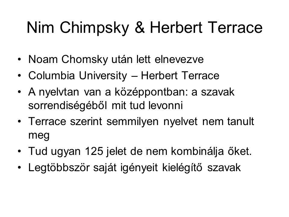 Noam Chomsky után lett elnevezve Columbia University – Herbert Terrace A nyelvtan van a középpontban: a szavak sorrendiségéből mit tud levonni Terrace szerint semmilyen nyelvet nem tanult meg Tud ugyan 125 jelet de nem kombinálja őket.