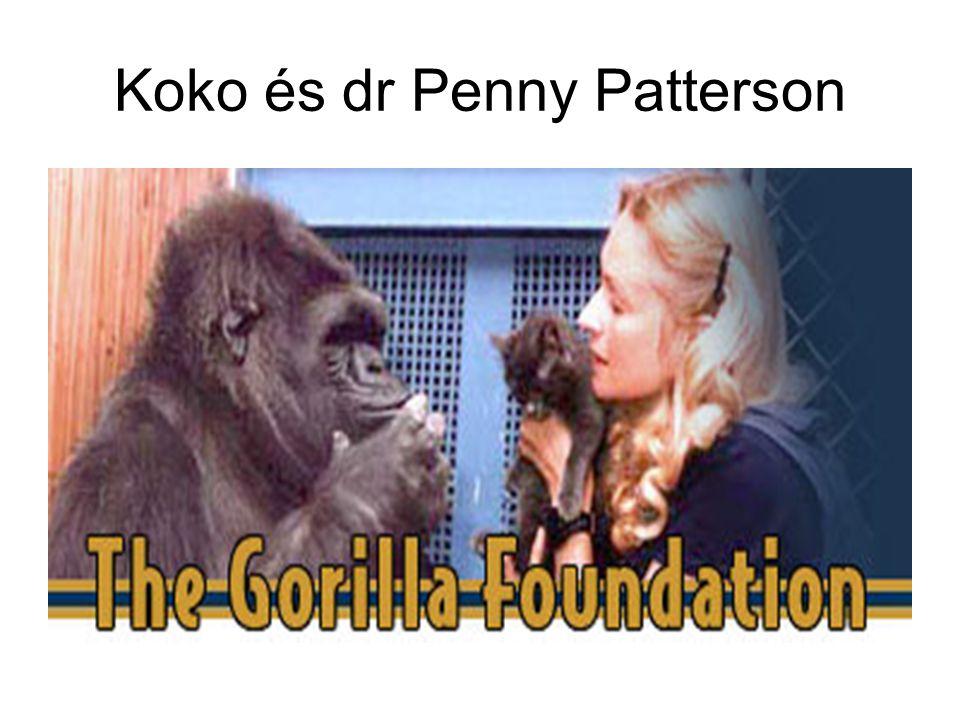 Koko és dr Penny Patterson