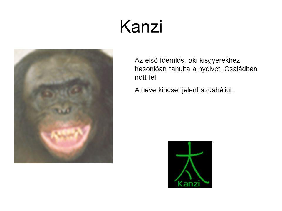Kanzi Az első főemlős, aki kisgyerekhez hasonlóan tanulta a nyelvet. Családban nőtt fel. A neve kincset jelent szuahéliül.