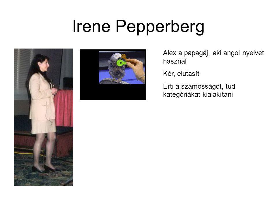 Irene Pepperberg Alex a papagáj, aki angol nyelvet használ Kér, elutasít Érti a számosságot, tud kategóriákat kialakítani