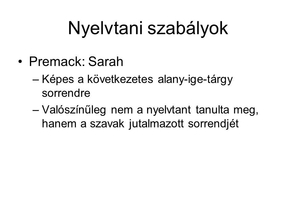 Nyelvtani szabályok Premack: Sarah –Képes a következetes alany-ige-tárgy sorrendre –Valószínűleg nem a nyelvtant tanulta meg, hanem a szavak jutalmazott sorrendjét