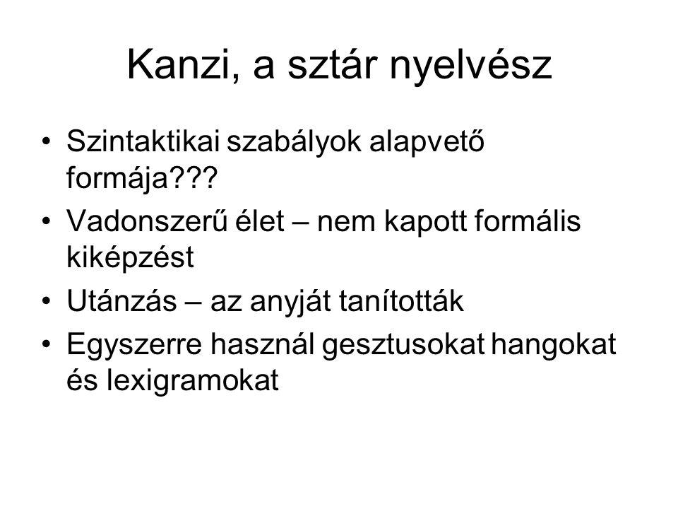 Kanzi, a sztár nyelvész Szintaktikai szabályok alapvető formája??? Vadonszerű élet – nem kapott formális kiképzést Utánzás – az anyját tanították Egys