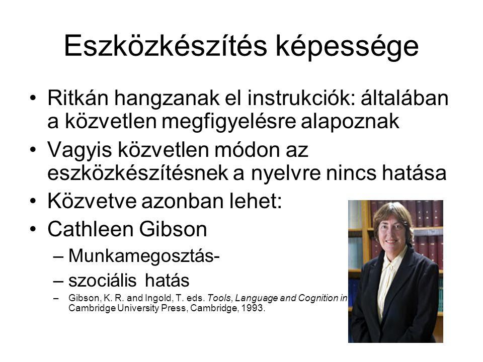 Eszközkészítés képessége Ritkán hangzanak el instrukciók: általában a közvetlen megfigyelésre alapoznak Vagyis közvetlen módon az eszközkészítésnek a nyelvre nincs hatása Közvetve azonban lehet: Cathleen Gibson –Munkamegosztás- –szociális hatás –Gibson, K.