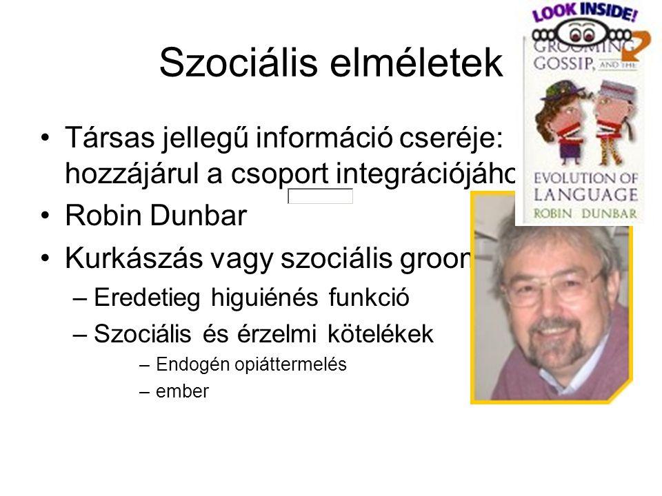 Szociális elméletek Társas jellegű információ cseréje: hozzájárul a csoport integrációjához Robin Dunbar Kurkászás vagy szociális grooming: –Eredetieg higuiénés funkció –Szociális és érzelmi kötelékek –Endogén opiáttermelés –ember