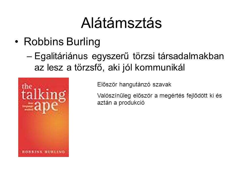 Alátámsztás Robbins Burling –Egalitáriánus egyszerű törzsi társadalmakban az lesz a törzsfő, aki jól kommunikál Először hangutánzó szavak Valószínűleg először a megértés fejlődött ki és aztán a produkció