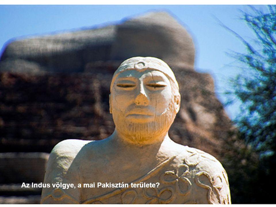Az Indus-völgy első városai Mohenjo Daro-ban (2600-1900 BC) az ásatások feltárták a fellegvárat és az ún.