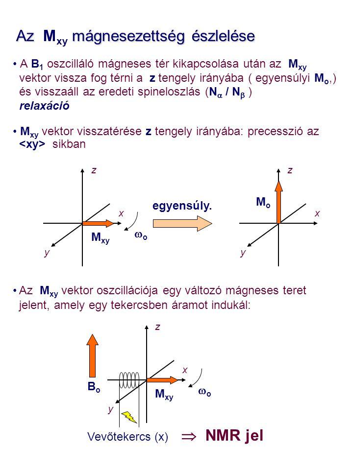Az mágnesezettség észlelése Az M xy mágnesezettség észlelése A B 1 oszcilláló mágneses tér kikapcsolása után az M xy vektor vissza fog térni a z tenge