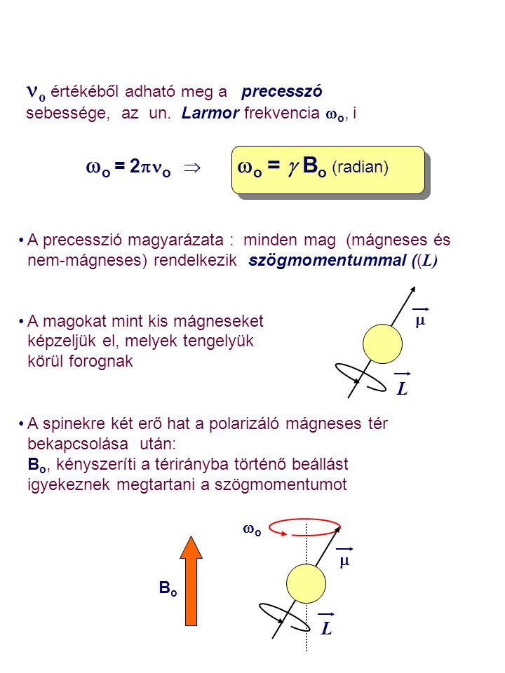 o értékéből adható meg a precesszó sebessége, az un. Larmor frekvencia  o, i   o  =  2  o    o  =  B o (radian) A precesszió