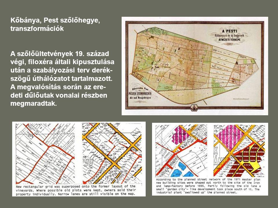 Kőbánya, Pest szőlőhegye, transzformációk A szőlőültetvények 19.