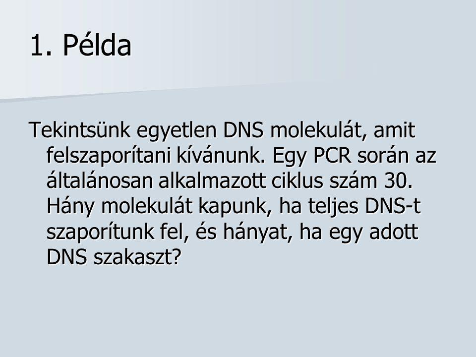 1. Példa Tekintsünk egyetlen DNS molekulát, amit felszaporítani kívánunk. Egy PCR során az általánosan alkalmazott ciklus szám 30. Hány molekulát kapu