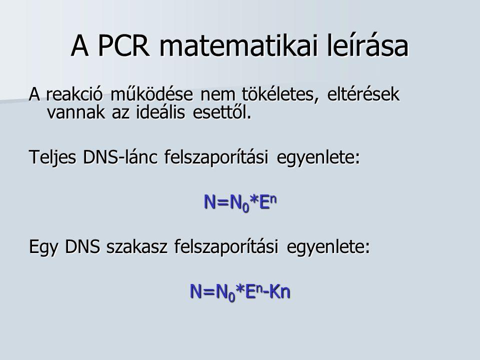 A PCR matematikai leírása A reakció működése nem tökéletes, eltérések vannak az ideális esettől. Teljes DNS-lánc felszaporítási egyenlete: N=N 0 *E n