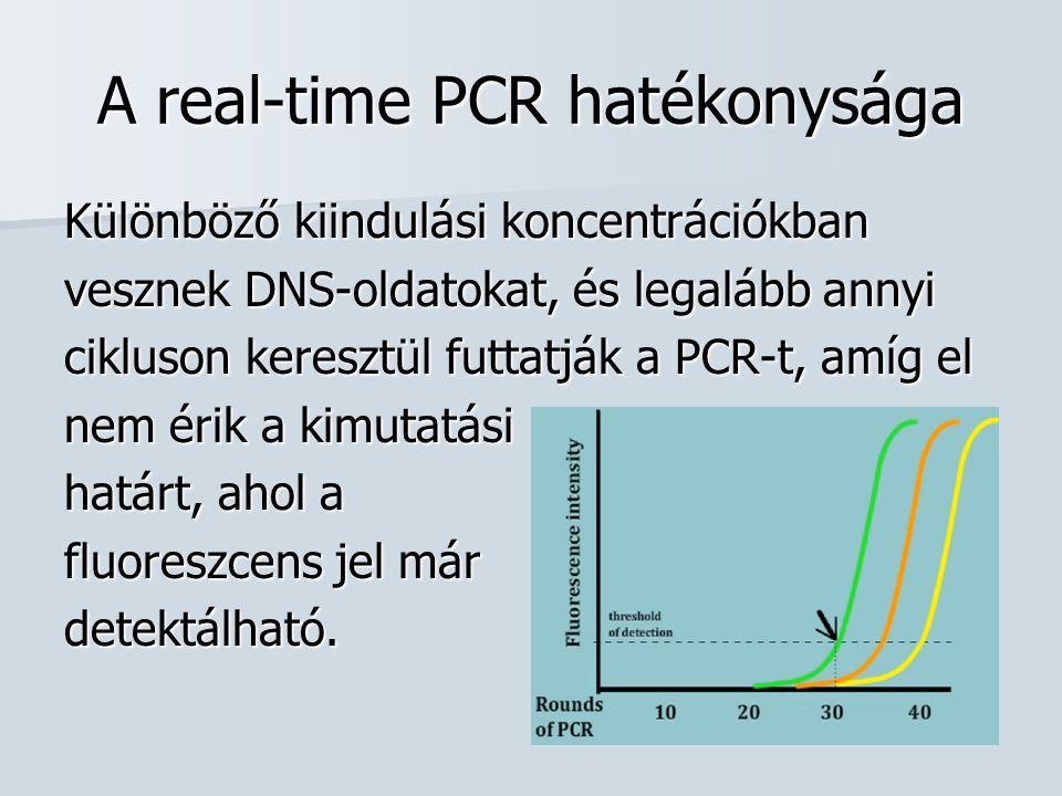 A real-time PCR hatékonysága Különböző kiindulási koncentrációkban vesznek DNS-oldatokat, és legalább annyi cikluson keresztül futtatják a PCR-t, amíg el nem érik a kimutatási határt, ahol a fluoreszcens jel már detektálható.