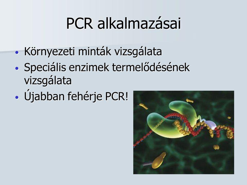 PCR alkalmazásai Környezeti minták vizsgálata Környezeti minták vizsgálata Speciális enzimek termelődésének vizsgálata Speciális enzimek termelődésének vizsgálata Újabban fehérje PCR.
