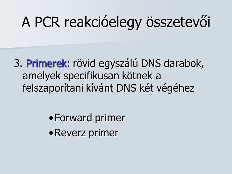 A PCR reakcióelegy összetevői 3. Primerek: rövid egyszálú DNS darabok, amelyek specifikusan kötnek a felszaporítani kívánt DNS két végéhez Forward pri