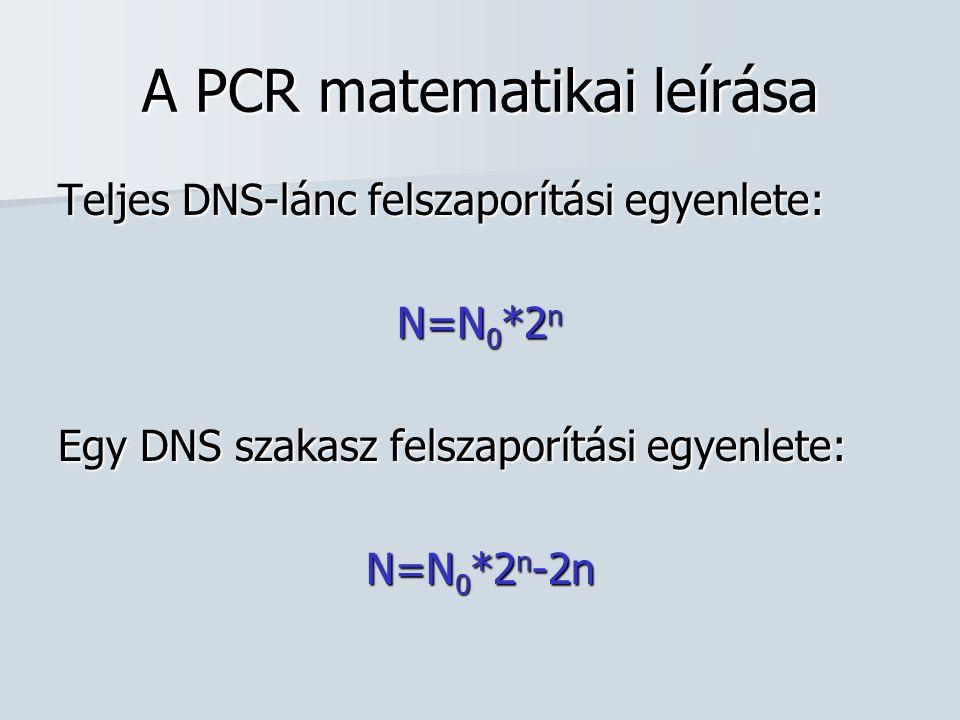 1.Példa Tekintsünk egyetlen DNS molekulát, amit felszaporítani kívánunk.