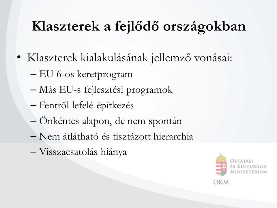 Klaszterek a fejlődő országokban Klaszterek kialakulásának jellemző vonásai: – EU 6-os keretprogram – Más EU-s fejlesztési programok – Fentről lefelé építkezés – Önkéntes alapon, de nem spontán – Nem átlátható és tisztázott hierarchia – Visszacsatolás hiánya