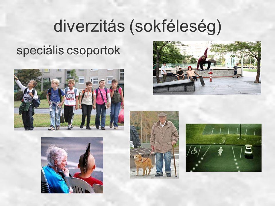 diverzitás (sokféleség) speciális csoportok