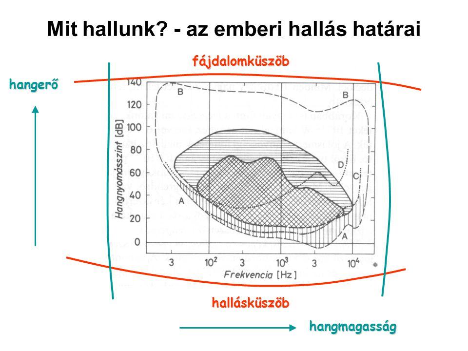 Mit hallunk? - az emberi hallás határai hallásküszöb fájdalomküszöb hangerő hangmagasság