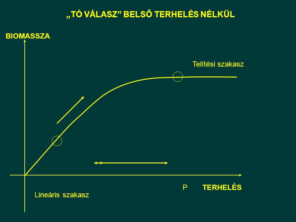 """""""TÓ VÁLASZ"""" BELSŐ TERHELÉS NÉLKÜL Lineáris szakasz Telítési szakasz BIOMASSZA TERHELÉSP"""