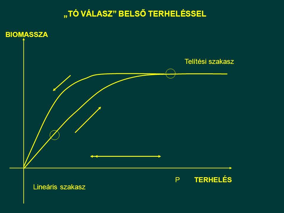 """""""TÓ VÁLASZ"""" BELSŐ TERHELÉSSEL Lineáris szakasz Telítési szakasz BIOMASSZA TERHELÉSP"""
