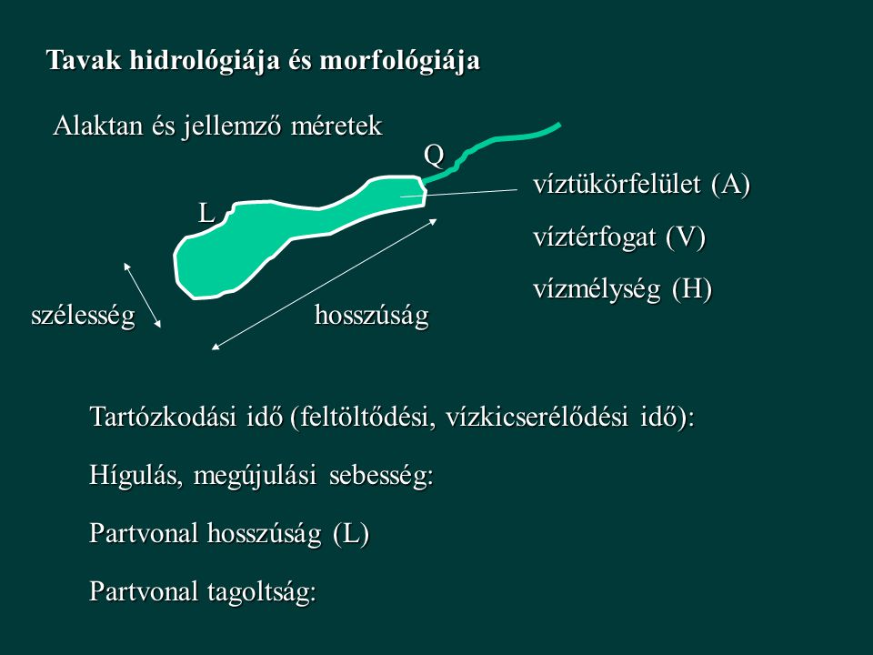 Tavak hidrológiája és morfológiája Alaktan és jellemző méretek hosszúságszélesség víztükörfelület (A) víztérfogat (V) vízmélység (H) Tartózkodási idő (feltöltődési, vízkicserélődési idő): Q Hígulás, megújulási sebesség: L Partvonal hosszúság (L) Partvonal tagoltság: