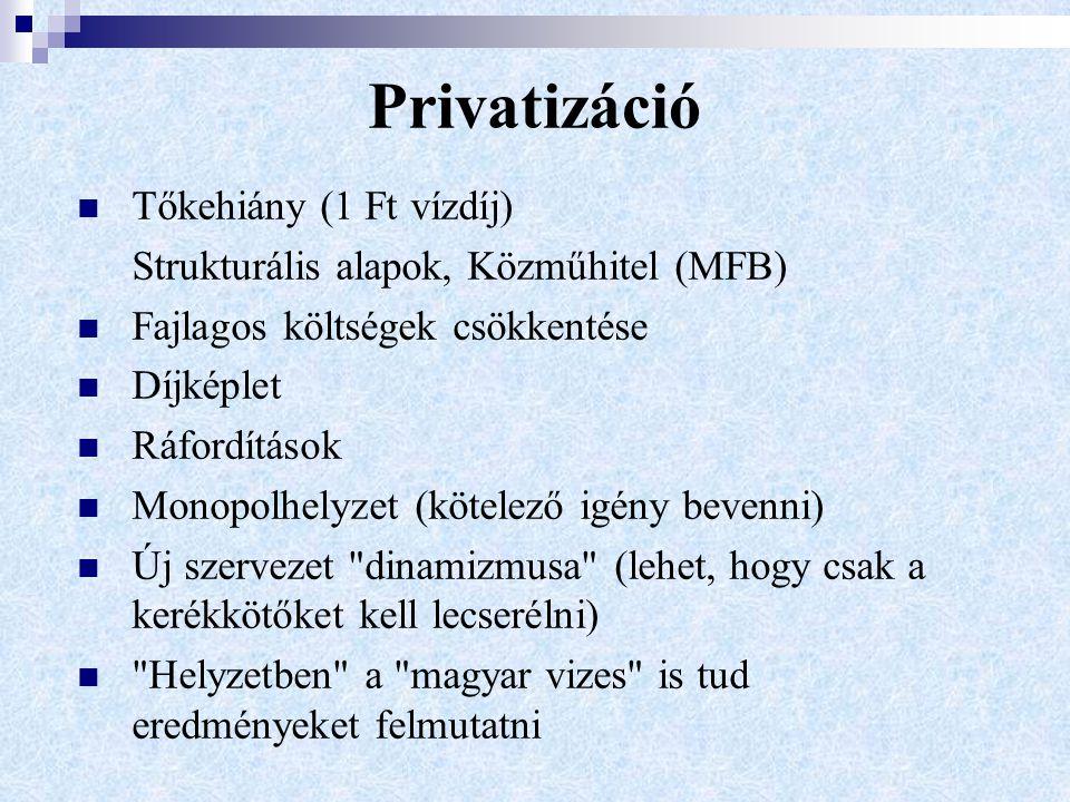 Privatizáció Tőkehiány (1 Ft vízdíj) Strukturális alapok, Közműhitel (MFB) Fajlagos költségek csökkentése Díjképlet Ráfordítások Monopolhelyzet (kötelező igény bevenni) Új szervezet dinamizmusa (lehet, hogy csak a kerékkötőket kell lecserélni) Helyzetben a magyar vizes is tud eredményeket felmutatni
