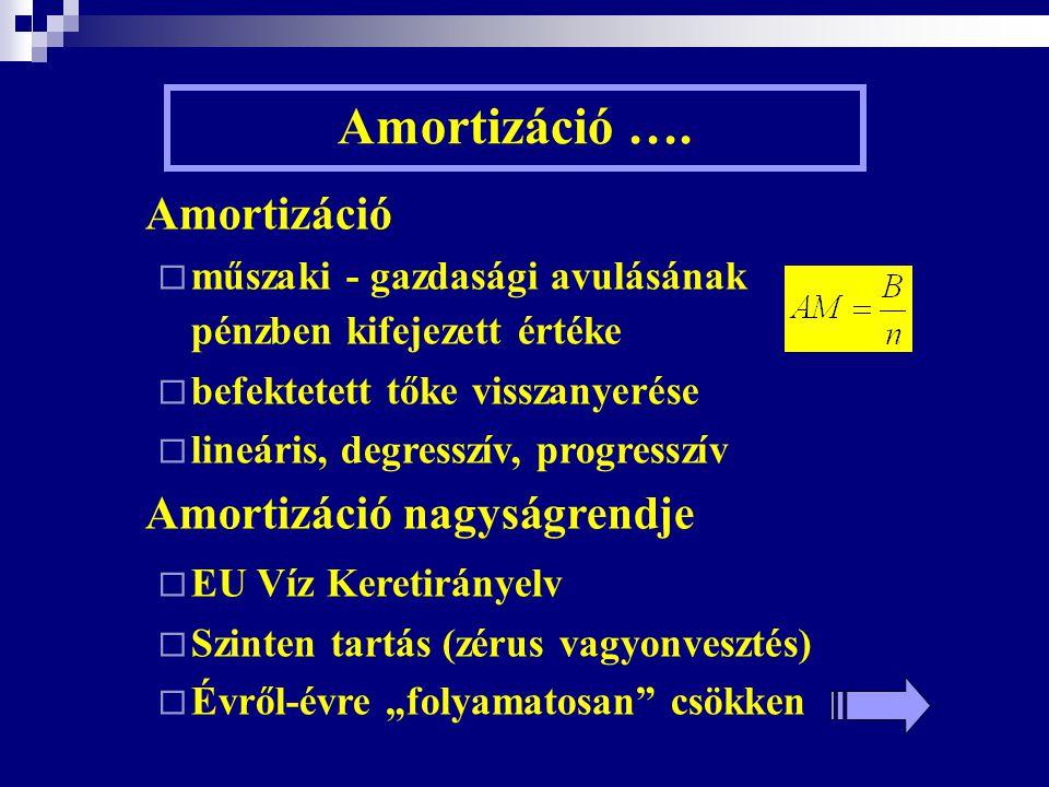 Amortizáció ….